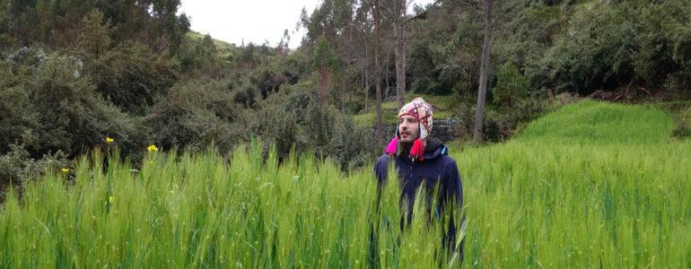 retreat San pedro deep treatment wachuma 5 days