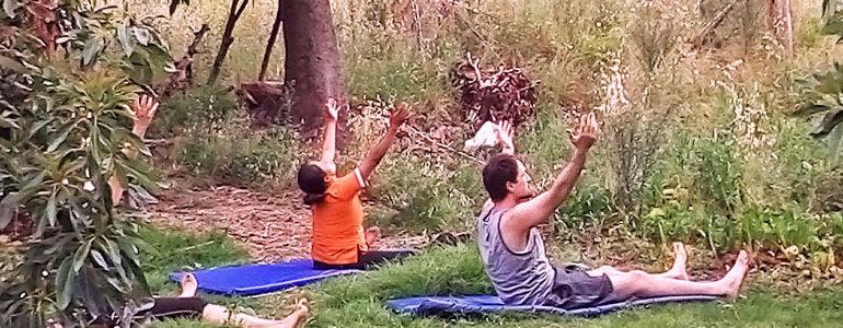 Ayahuasca Healing Medicinal Retreat: 3 Days